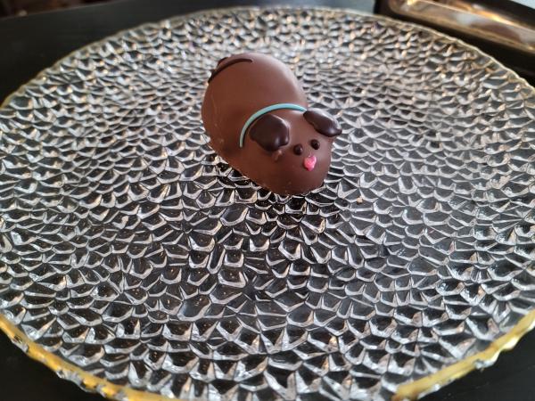 Milk Chocolate Dog 2
